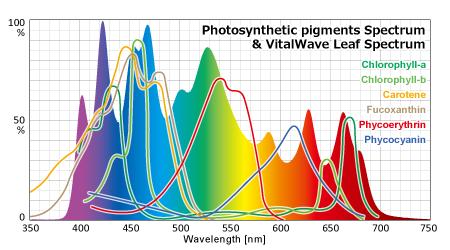 バイタルウェーブ・リーフの光合成色素カバー率