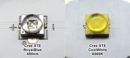 青色LEDと白色LED