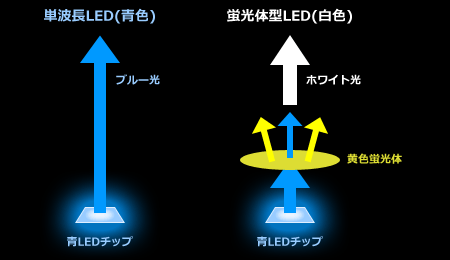 単波長LEDと蛍光体型LEDの構造