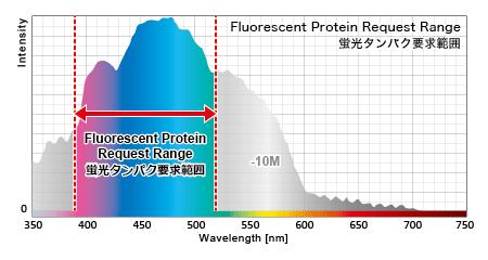蛍光タンパクの励起発光に必要な主な波長範囲
