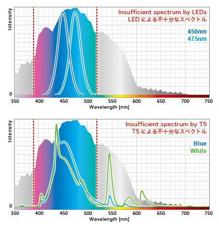 蛍光タンパクの要求を無視した人工光源の例