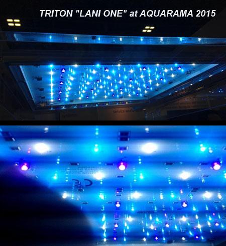 TRITON LANI LED