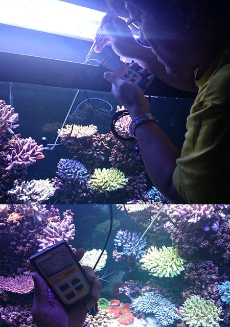 水深毎のPPFD測定