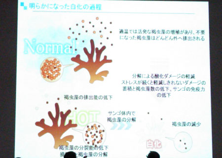公開シンポジウム:ディスカッション スライド1
