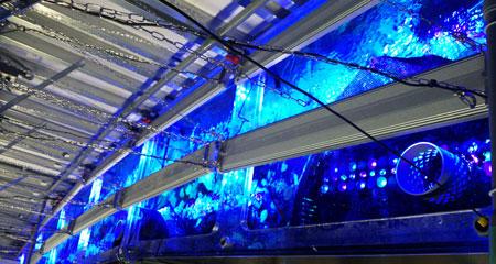 エプソン水族館リニューアル準備