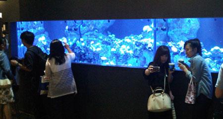 エプソン水族館リニューアルオープン「エプソンアクアパーク」