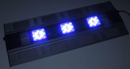 Maxspect Razor 15000K 180W:全灯状態