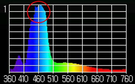 間違ったスペクトル