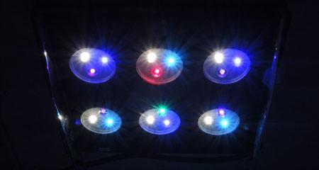 AQUA SANRISE PLUS MMCスペシャル R30 UV強化後の発光具合