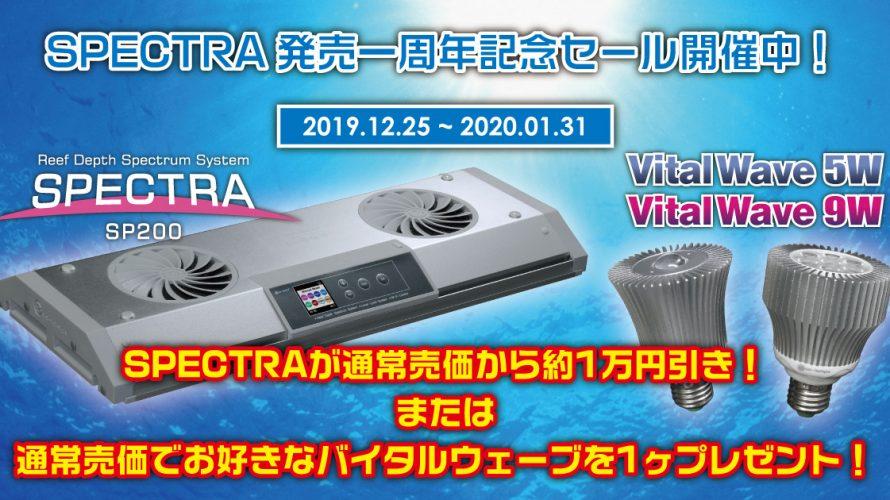 SPECTRA一周年記念セール開始!